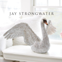 jaystrongwater.com logo